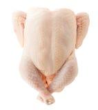 未加工的鸡 免版税库存图片