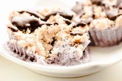 未加工的素食主义者胡说的点心用蓝莓、椰子和巧克力 H 免版税库存图片