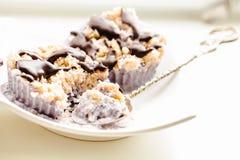 未加工的素食主义者胡说的点心用蓝莓、椰子和巧克力 H 库存照片