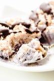 未加工的素食主义者胡说的点心用蓝莓、椰子和巧克力 H 图库摄影