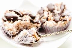 未加工的素食主义者胡说的点心用蓝莓、椰子和巧克力 H 免版税库存照片