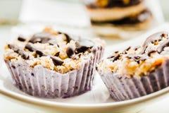 未加工的素食主义者胡说的点心用蓝莓、椰子和巧克力 H 库存图片