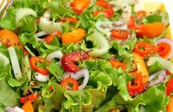 未加工,与五颜六色的菜的春天沙拉 库存图片