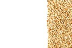 未加工,自然,未煮过的荞麦种子仁毗邻框架 图库摄影