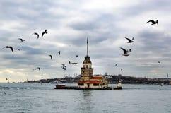 未婚塔在伊斯坦布尔 库存图片