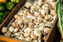 未张开的蘑菇在市场上 库存照片