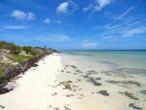 未损坏的海滩 免版税库存照片