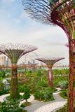 未来派庭院,新加坡 图库摄影
