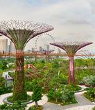 未来派庭院,新加坡 免版税库存照片