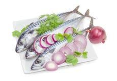 未煮过的大西洋鲭鱼、葱和煮食之蔬菜在一白色backgro 库存照片