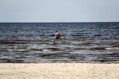 未知的人游泳在海 免版税图库摄影