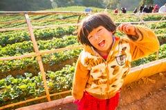未知的名字女孩在手上的拿着草莓在草莓农场在早晨愉快 免版税库存照片