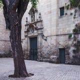 未知的巴塞罗那 免版税库存照片