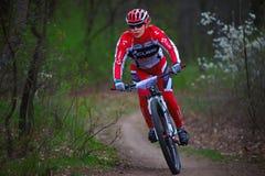 未知的登山车骑自行车者妇女 免版税图库摄影