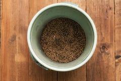 未腐烂之肥料种子 库存图片
