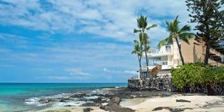 未触动过的沙滩的豪华旅馆与棕榈树和天蓝色 免版税图库摄影