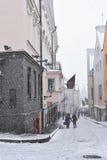 未认出的人民在老镇走在塔林 库存照片