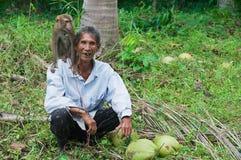 未认出的农夫画象有猴子的Kog的苏梅岛,泰国椰子种植园 免版税库存图片