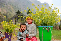 未认出的少数族裔哄骗与油菜籽花篮子在Hagiang,越南 免版税库存照片