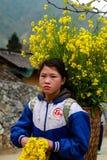 未认出的少数族裔哄骗与油菜籽花篮子在Hagiang,越南 库存照片