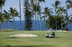 未认出的高尔夫球运动员享受高尔夫球比赛  库存图片