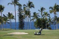 未认出的高尔夫球运动员享受高尔夫球比赛  免版税库存照片