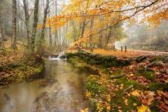 末多da Albergaria,秋天, Geres 库存图片