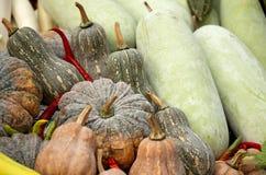 本地出产的蔬菜 库存图片