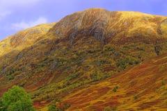 本尼维斯山范围在秋天 库存图片