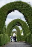 本机的广泛的修剪的花园 免版税库存图片