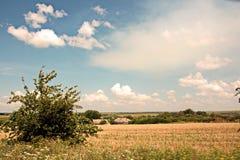 本质、领域、乌克兰的村庄和路风景视图  从车窗的看法,当驾驶时 免版税库存照片