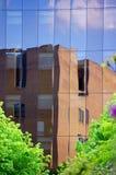本质和现代生活的融合通过skyscrape 库存照片