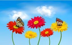 本质春天与蝴蝶的gerber花 向量例证
