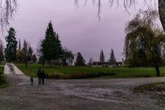 本那比,加拿大- 2018年11月25日:Deer湖公园多雨秋天天在不列颠哥伦比亚省11月本那比加拿大 免版税库存照片