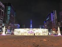 札幌,日本- DEC 17日2016年:圣诞节在Odori公园庆祝 免版税库存图片