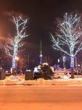 札幌,日本- DEC 17日2016年:圣诞节在Odori公园庆祝 图库摄影