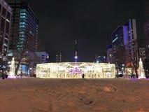 札幌,日本- DEC 17日2016年:圣诞节在Odori公园庆祝 免版税图库摄影