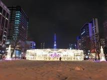 札幌,日本- DEC 17日2016年:圣诞节在Odori公园庆祝 库存照片