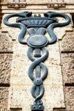 医术的人员-众神使者的手杖 免版税图库摄影