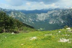 朱利安的阿尔卑斯 库存照片