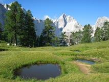 朱利安的阿尔卑斯 免版税库存图片