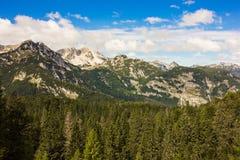 朱利安阿尔卑斯山在斯洛文尼亚,在Bohinj湖附近 库存照片