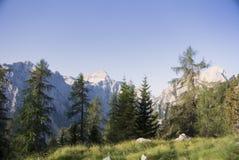 朱利安阿尔卑斯山,山 免版税库存图片