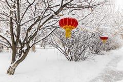 朱红色的灯笼东北雪树 图库摄影