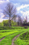 8朵添加大蓝色云彩遥远的容易的eps调遣五前景格式绿色横向草甸计划红色农村天空春天那里郁金香村庄 库存照片