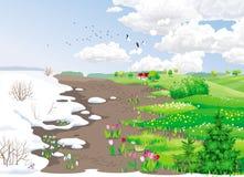 8朵添加大蓝色云彩遥远的容易的eps调遣五前景格式绿色横向草甸计划红色农村天空春天那里郁金香村庄 图库摄影