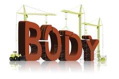机体大厦执行健身体操肌肉锻炼 免版税库存图片