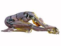 机器人其它 免版税库存照片