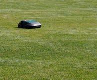 机器人割草机在草坪的工作在一个晴天 免版税库存图片
