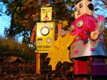 机器人夫妇colecting的秋叶 库存图片